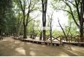 【公園】石神井公園 約1,000m