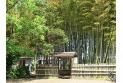 【公園】竹林公園 約520m