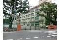 【小学校】練馬区立大泉学園小学校 約420m