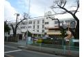 【小学校】新座市立野寺小学校 約520m