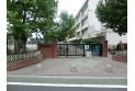 【小学校】大泉学園緑小学校 約640m