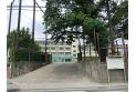 【小学校】大泉第二小学校 約680m