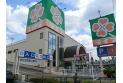 【スーパー】ライフ新座店 最寄のスーパーまで徒歩14分、毎日のお買い物に便利ですね。 約1,110m