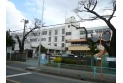 【小学校】新座市立野寺小学校 約750m