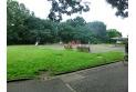 【公園】都立大泉中央公園 約240m