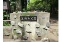 【公園】石神井公園 約650m