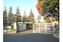 【小学校】東萩山小学校 約385m