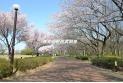 【公園】東村山中央公園 約190m