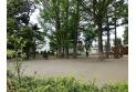 【公園】森林公園 約140m