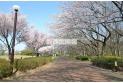 【公園】東村山中央公園 約460m
