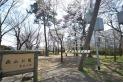 【公園】萩山公園 約10m