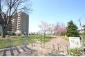 【公園】萩山四季の森公園 約10m