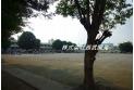【小学校】富士見市立関沢小学校 約500m
