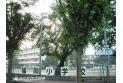 【小学校】福岡小学校 約750m