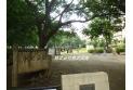 【公園】唐沢公園 約400m