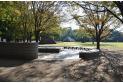 【公園】水子貝塚公園 約400m