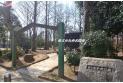 【公園】西ノ原中央公園 約120m