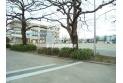 【小学校】竹間沢小学校 約350m
