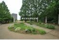 【公園】東原親水公園 約500m