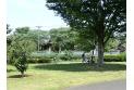 【公園】小山れんげ公園 約880m