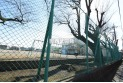 【小学校】秋津小学校 約320m