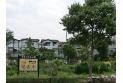 【公園】落合川水生公園 約50m