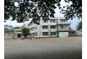 【小学校】秋津小学校 約460m