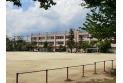 【小学校】西堀小学校 約900m