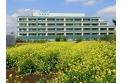 【病院】新座病院 約750m