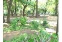 【公園】清瀬中央公園 約640m