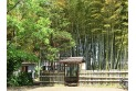 【公園】竹林公園 約540m