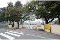 【中学校】第十小学校 約560m