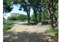 【公園】矢川上公園 約700m