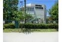 【幼稚園・保育園】矢崎幼稚園 約900m