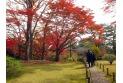 【公園】殿ケ谷戸庭園 約740m