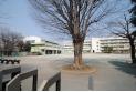 【小学校】第七小学校 約230m