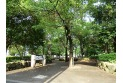 【公園】中河原公園 約350m