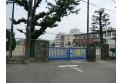 【中学校】緑中学校 約350m