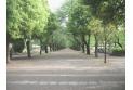 【公園】府中の森公園 約530m