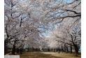 【公園】葉根木公園 約330m
