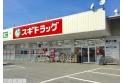 【ドラッグストア】スギドラッグ戸田笹目店 約840m