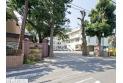 【小学校】木崎小学校 約950m