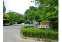 【公園】大宮公園 約800m