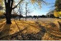 【公園】日進公園 約450m
