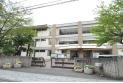 【中学校】桜木中学校 約60m