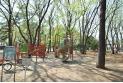 【公園】緑町中央公園 約740m