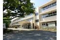 【小学校】所沢市立清進小学校 約980m