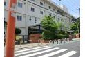 【小学校】関前南小学校 約390m