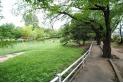 【公園】白山公園 約920m