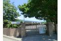 【幼稚園・保育園】東京女子学院幼稚園 約900m